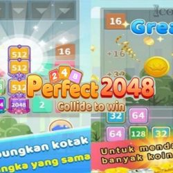 Game Perfect 2048